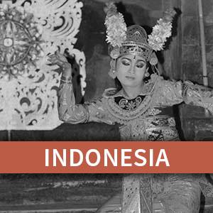 INDONESIA KINSHIP