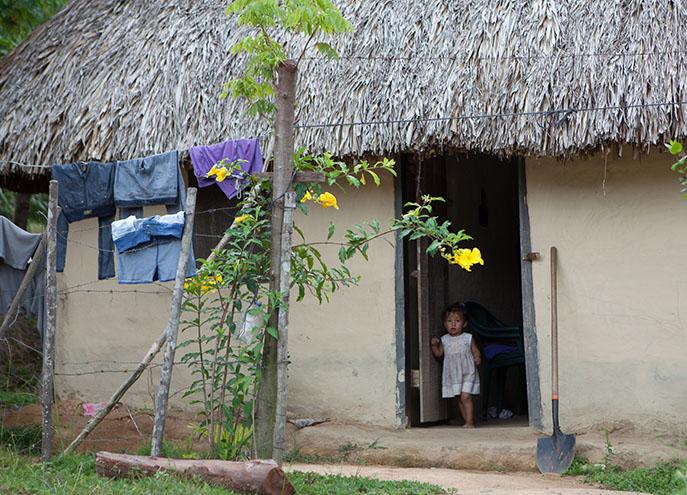 Honduras Kinship - 9