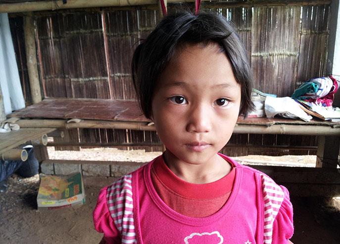 Wiang Pa Pao Kinship - 4