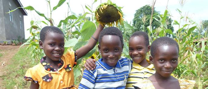 Charity for Minziro Kinship - Uganda
