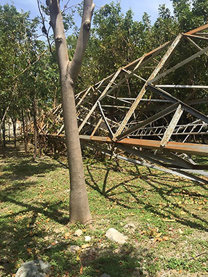 The high winds of Hurricane Irma ripped down towers and trees all over the island.