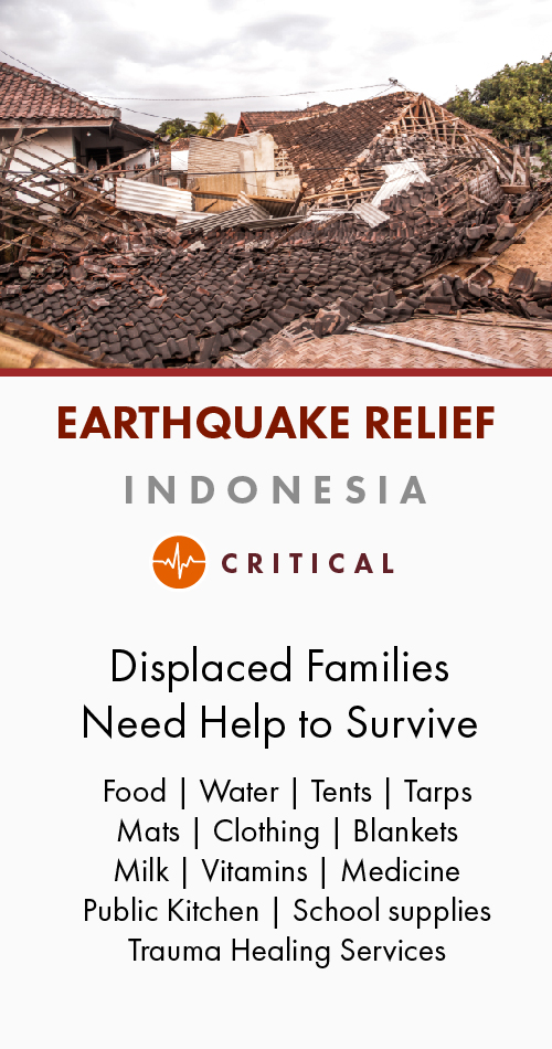 Indonesia Earthquake Relief-Profile